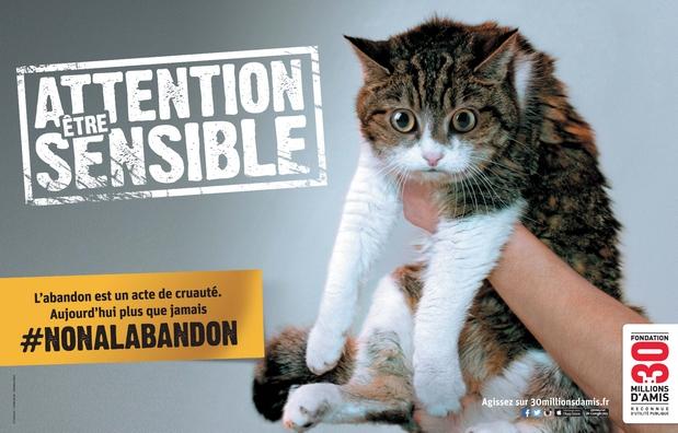 Affiche campagne contre l'abandon 2015 - 30 MA